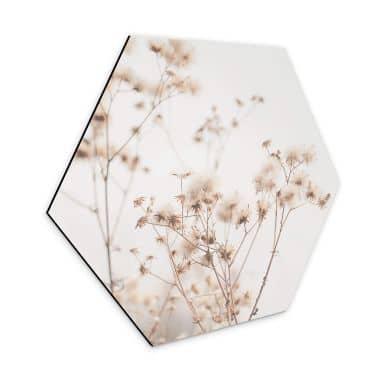 Hexagon Dibond Alu-Dibond - Lovely Pastels