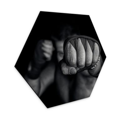 Hexagon Dibond Vrican - Een Linkse