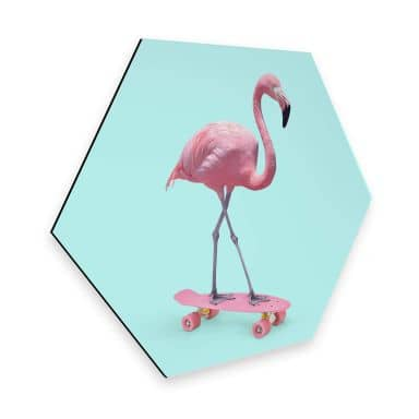 Hexagon Alu-Dibond - Fuentes - Skate Flamingo