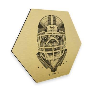 Hexagon - Alu-Dibond-Goldeffekt Kools - American Pug Football
