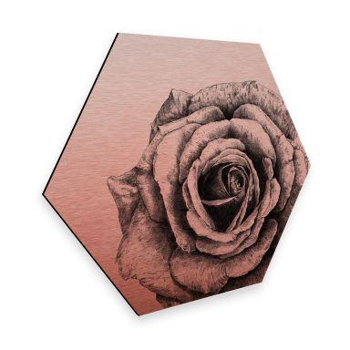 Hexagon - Alu-Dibond Kupfereffekt Kools - Rose