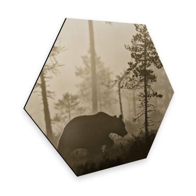 Hexagon - Alu-Dibond - Ove Linde - Nebel am Morgen
