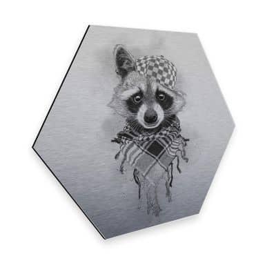 Hexagon - Alu-Dibond-Silbereffekt Kools - Rocco Raccoon