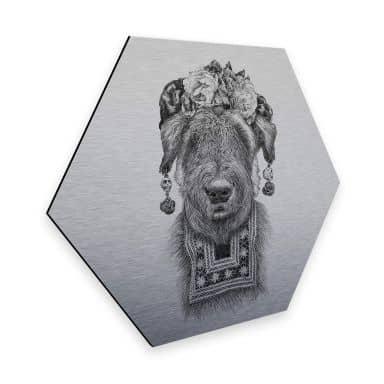 Hexagon - Alu-Dibond Silbereffekt Kools - Suusi Kahlo