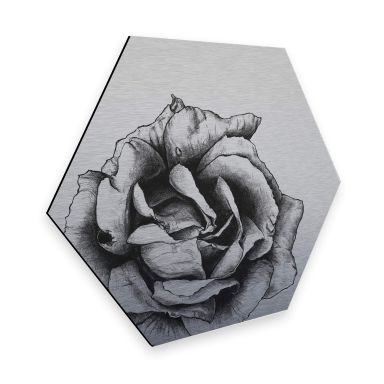 Hexagon - Alu-Dibond Silbereffekt Kools - Thornless