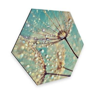 Hexagon - Alu-Dibond Delgado - Magic dandelion