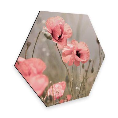 Hexagon - Alu-Dibond Delgado - Bloemenromantiek