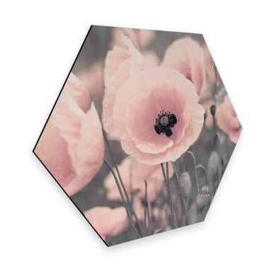 Hexagone - Alu-Dibond Delgado - Coquelicot rose