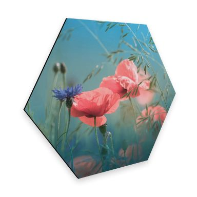 Hexagon - Alu-Dibond Delgado - Wildblumen Aquamarin