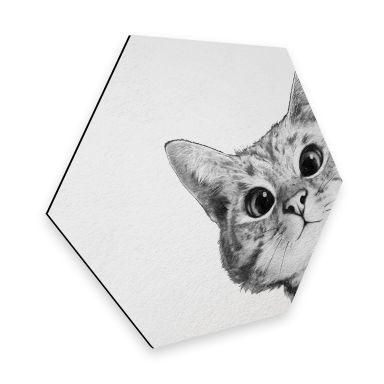 Hexagon - Alu-Dibond Graves - Sneaky Cat