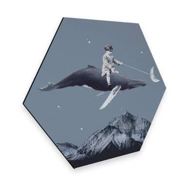 Hexagon - Alu-Dibond Léon - Aim for the moon