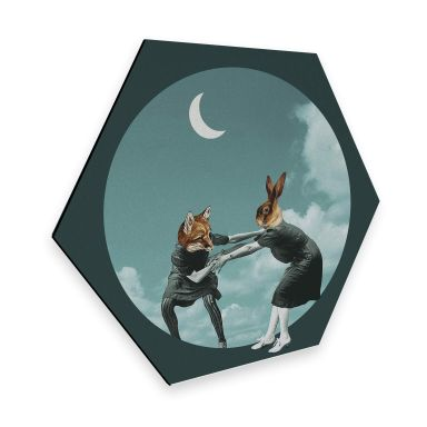 Hexagon - Alu-Dibond Léon - Chase the night