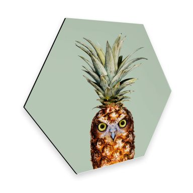 Hexagon alu-dibond Loose - Pineapple Owl