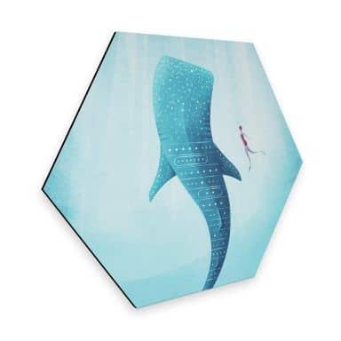 Hexagon Alu-Dibond Rivers - The Whale shark