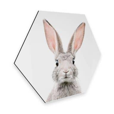 Hexagon Alu-Dibond - Sisi & Seb - Bunny