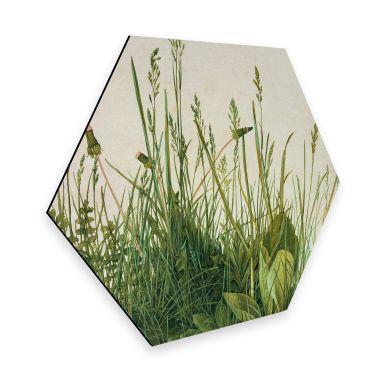 Hexagon - Alu-Dibond Dürer - Das große Rasenstück