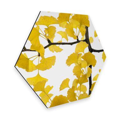 Hexagon Dibond Kadam - Flora Ginko