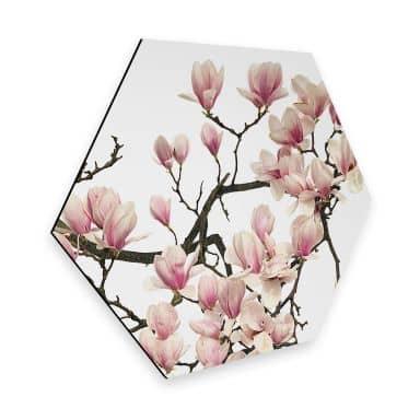 Hexagon - Alu-Dibond Kadam - Flora Magnolia