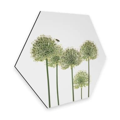 Hexagon Dibond Kadam - Flora Ornaments