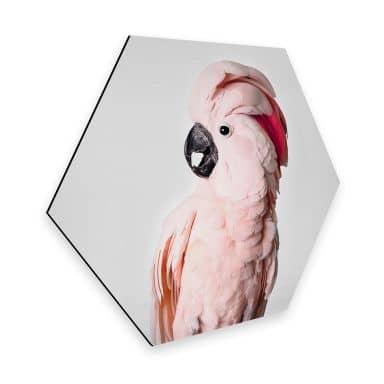 Hexagon Dibond Sisi & Seb - Roze Kaketoe