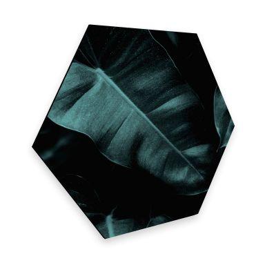 Hexagon Dibond Kubistika - Jungle