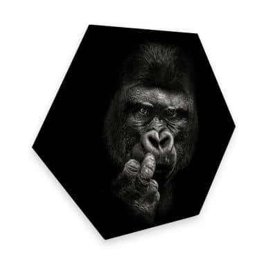 Hexagon Dibond Meermann - Gorilla