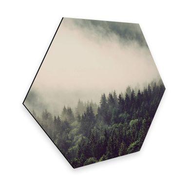 Hexagon - Alu-Dibond Nebel im Wald 02