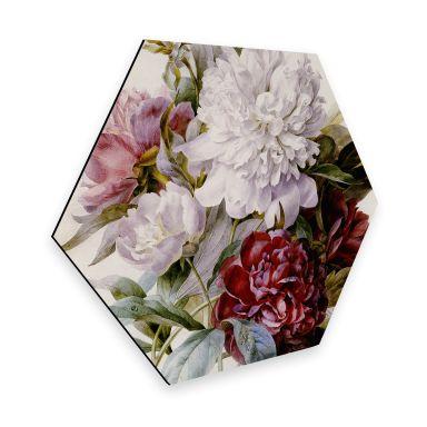 Hexagon - Alu-Dibond Redouté - Strauß von roten, lila und weißen Pfingstrosen