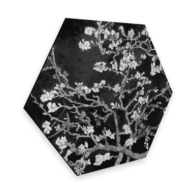 Hexagon - Alu-Dibond van Gogh - Mandelblüte - schwarz