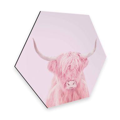 Esagoni Alu-dibond Fuentes - Highland Cow