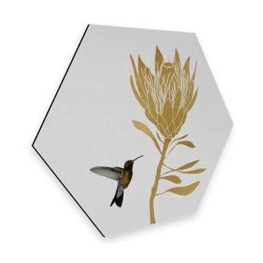 Hexagon Dibond Orara Studio - Hummingbird & Flower