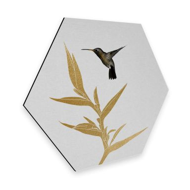 Hexagon - Alu-Dibond Orara Studio - Hummingbird and Flower - goldene Pflanze