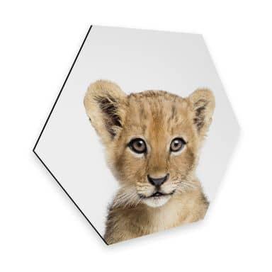 Hexagon Dibond Sisi & Seb - Baby Leeuwtje