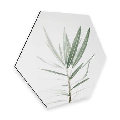 Hexagon Dibond Sisi & Seb - Oleander