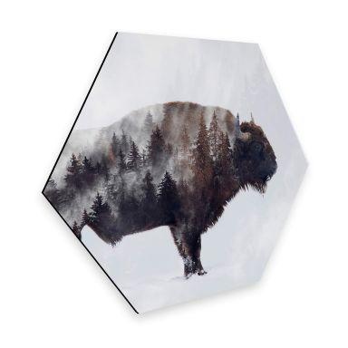 Hexagon - Alu-Dibond - Beáta - Bison