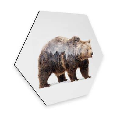 Hexagon - Alu-Dibond - Beáta - Bear