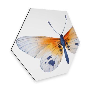 Hexagon - Alu-Dibond - Kvilis - Schmetterling 02