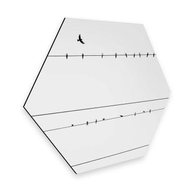 Hexagon - Alu-Dibond - High Voltage