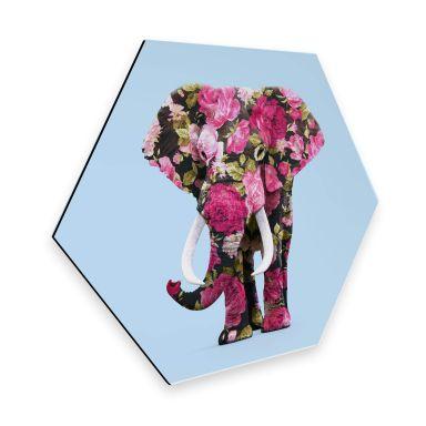 Hexagon - Alu-Dibond Fuentes - Floral Elephant