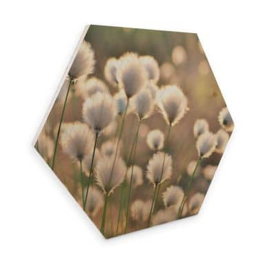 Hexagon - Holz Birke-Furnier Delgado - Wiesenzauber