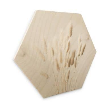 Hexagon Hout 1X Studio - Dried Grass