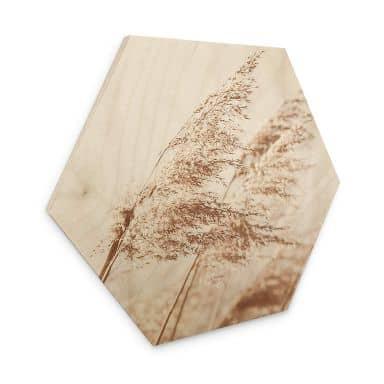 Hexagon - Holz Gräser im Wind