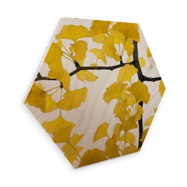 Hexagon Hout Kadam - Flora Ginko