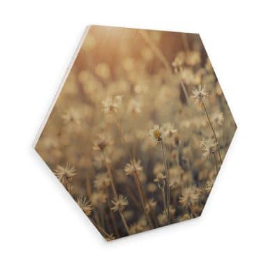 Hexagon - Holz Mexican Daisy