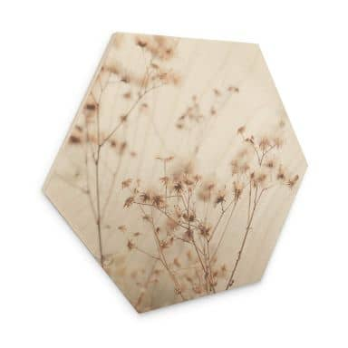 Hexagon Hout Lovely Pastels