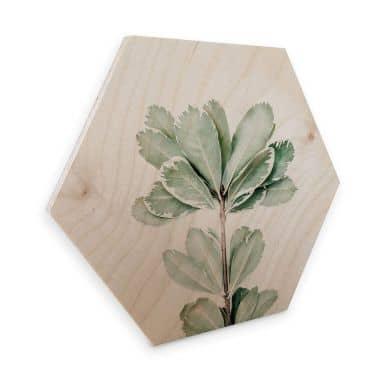 Hexagon - Holz Sisi & Seb - Botanik