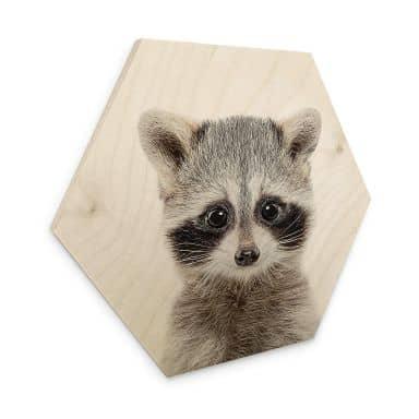 Hexagon - Holz Birke-Furnier Sisi & Seb - Baby Waschbär
