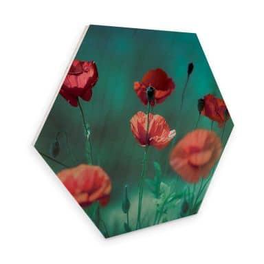 Hexagon Wood - Delgado - Watercolor Poppies