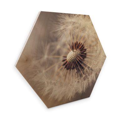 Hexagone - Placage bois de bouleau Delgado - Pissenlits