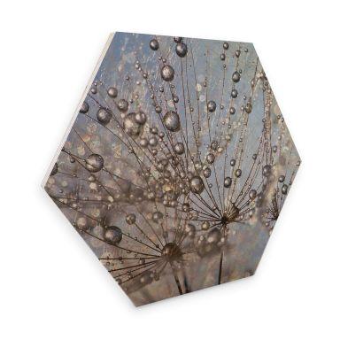 Hexagon - Holz Birke-Furnier Delgado - Wassertropfen in der Pusteblume